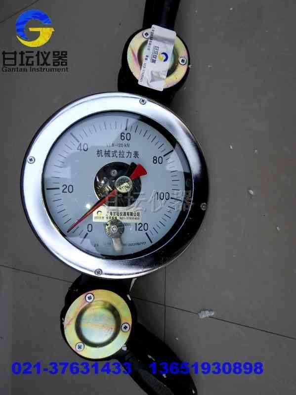 100公斤指针拉力计,100kg数显拉力计-1000N推拉式测力计